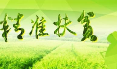 西藏自治區嘉黎縣林堤鄉創業扶貧致富小記