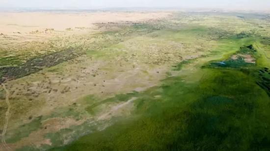 ↑這是內蒙古鄂爾多斯市杭錦旗庫布其沙漠中的生態修復現狀(7月11日無人機拍攝)。新華社記者 彭源 攝
