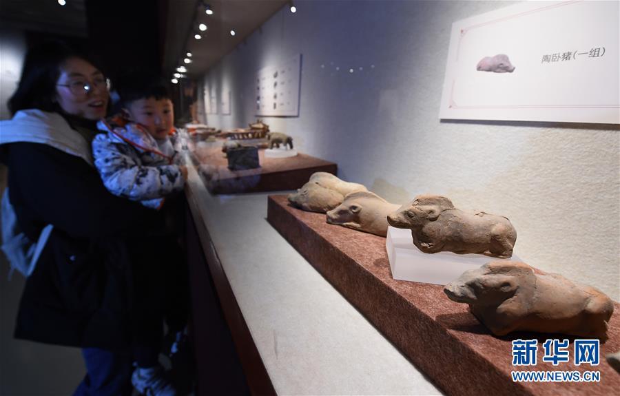 (文化)(4)南京博物院举办院藏猪文物展